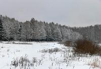 Зимнее пано
